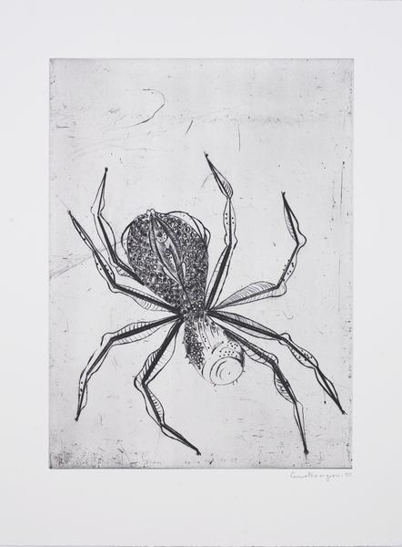 Medium spider 1995