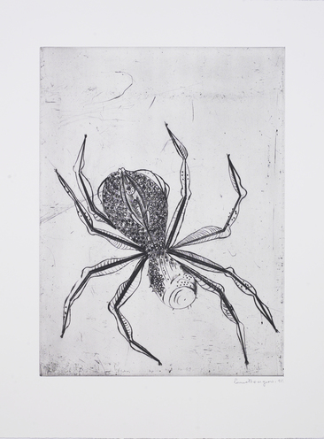 Small spider 1995