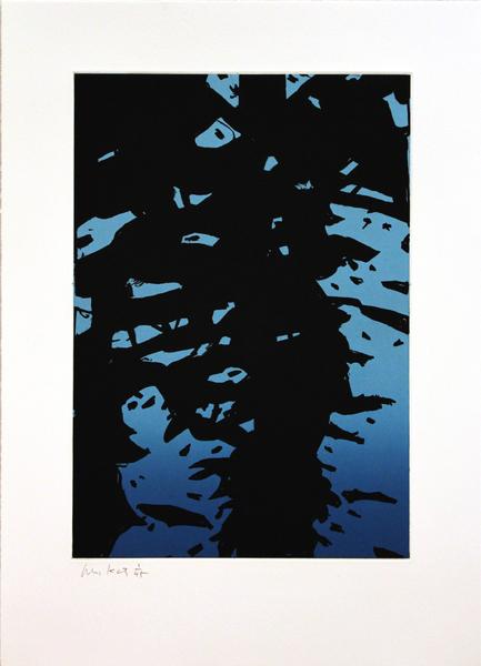 Medium ak10 01 reflection i  2010